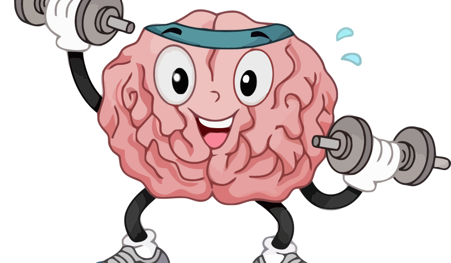 Image by Urhan TV from Pixabay - Your 'TO DO' List for a Healthy Brain
