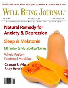 Well Being Journal – December 2018