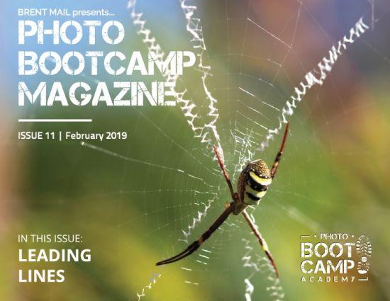 Photo BootCamp Magazine – February 2019