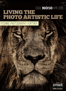 Living The Photo Artistic Life – April 2019