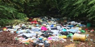 MageeNews.com Dumping