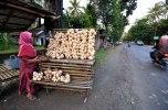 Bengkoangs seller, Prembun district, Kebumen Regency. Image taken on July 6, 2013.