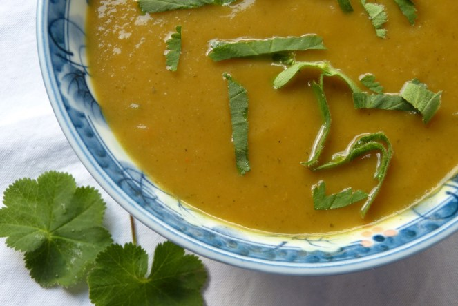 frauenmantel-suppe