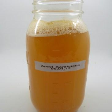 apfel-kombucha1