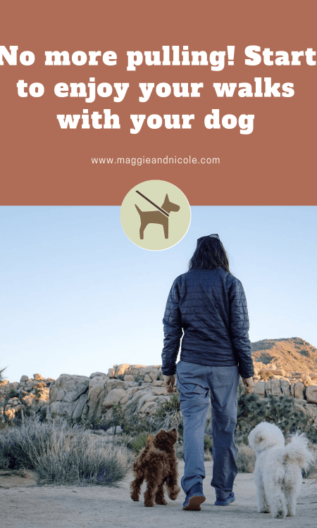 How to get your dog to stop pulling on leash