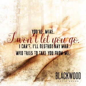 blackwoodteaser