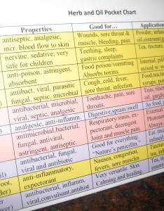 Front side of chart also announcing essential oil and herb quick reference rh rememberingmaggielane
