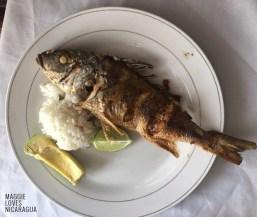 fritierter Fisch von Noel zubereitet