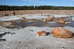 Wood-Buffalo-National-Park-salt-plain