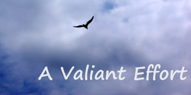 39-a-valiant-effort