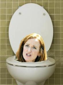 flush Kathleen Rice