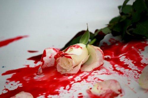 Bloody Rose by Minzuki (2012)