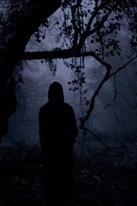 figure in woods
