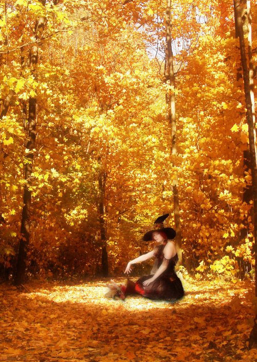 Mabon 2010 by Madame Guinevere