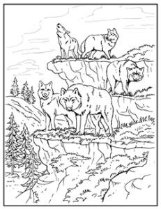 MaggieMooseTracks® Wolf Pack Coloring Pages