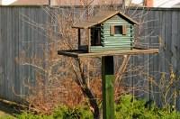 birdhouse feeder plans