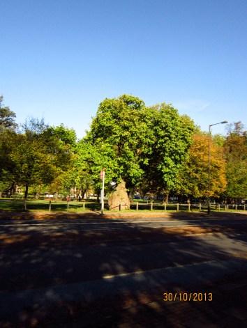 To Clapham Common#32©2013 MaggieWinnall