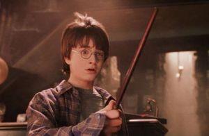 TEST varita Harry Potter