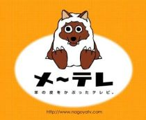 TV出演のお知らせ★