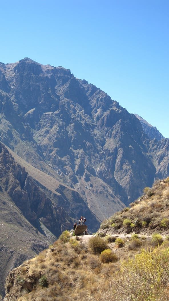 Canyon de la Colca - Perou - 5
