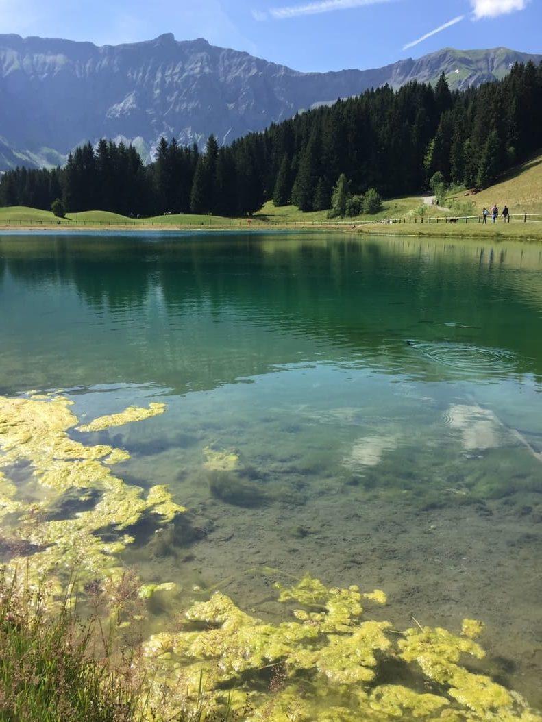 Lac de Javen - Megeve - 5