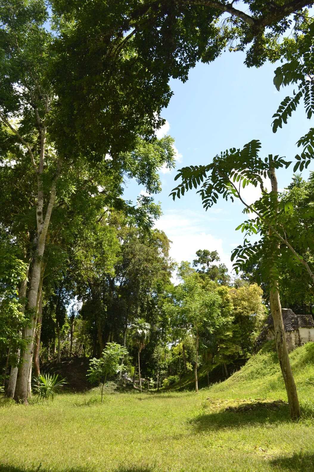 Tikal - guatemala 5