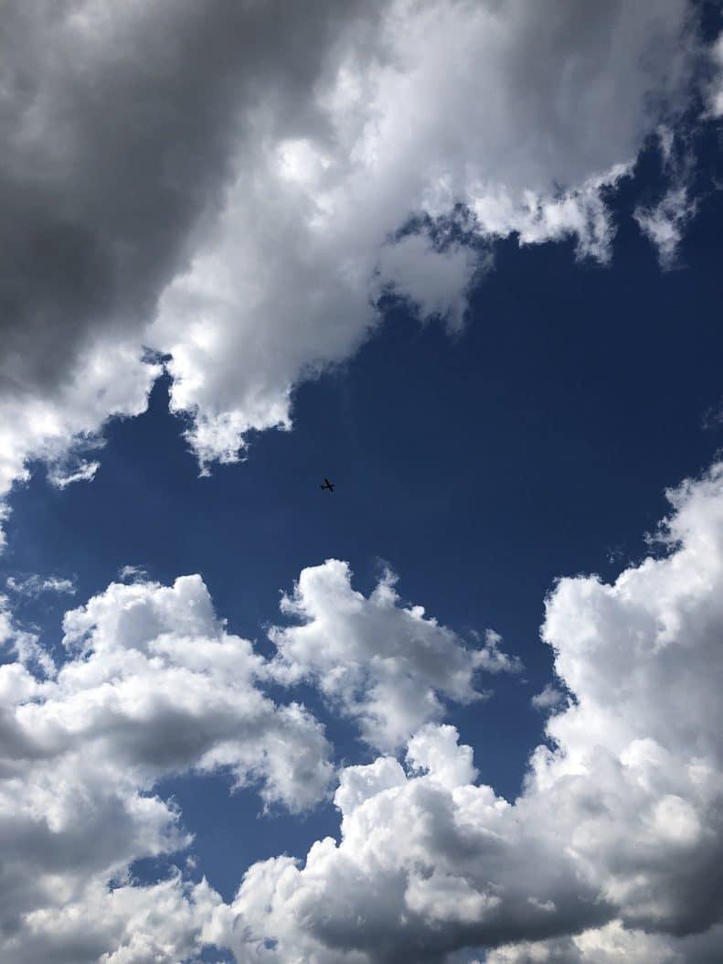 aerocime - vol avion massif du mont blanc - megeve - France - image 3