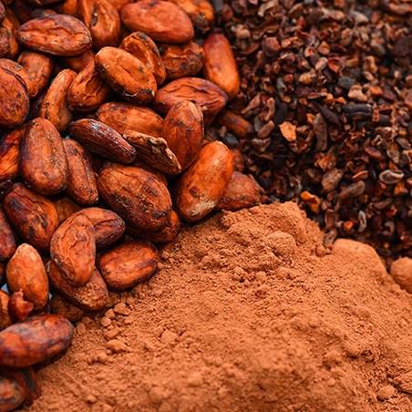 madagascar-tana-chocolatRobert-2