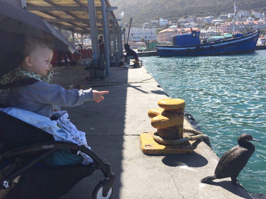 Kalk Bay - Cape Town - AFS 5