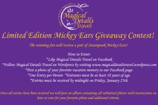 Ears Giveaway copy