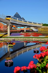 A photo of the monorail in Epcot with a beautiful display of gardens below.