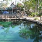 BREAKING: Typhoon Lagoon's Shark Reef Closing