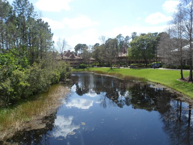 View from bridge towards Alligator bayou