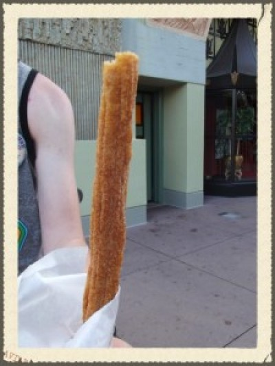 Churro bought at a snack stand at Hollywood Studios-Picture by Lisa McBride