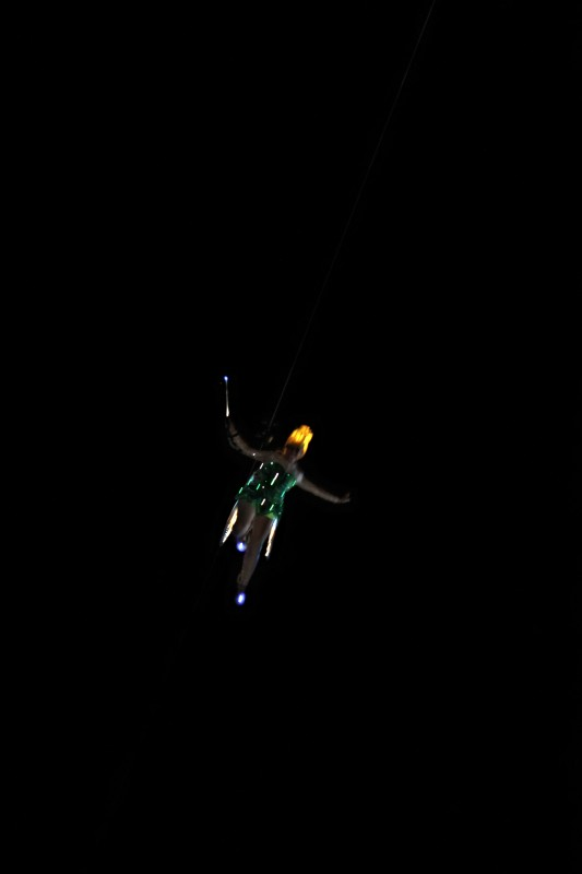 Tinkerbell as seen from Wishes Dessert Party at the Magic Kingdom-Picture by Lacey McBride Spence