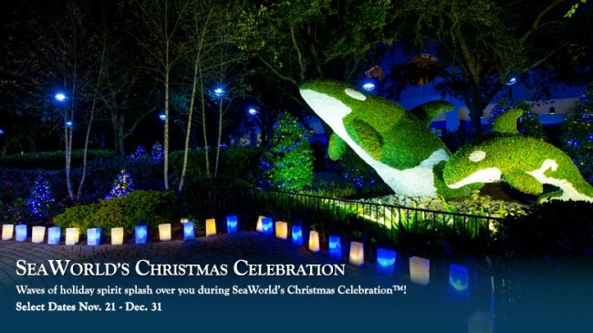 SeaWorld Christmas Celebration-Photo Credit SeaWorld