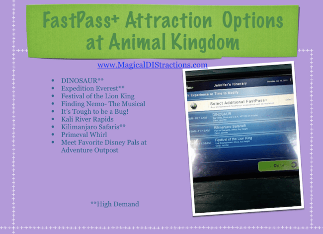 Fastpass+ and Animal Kingdom