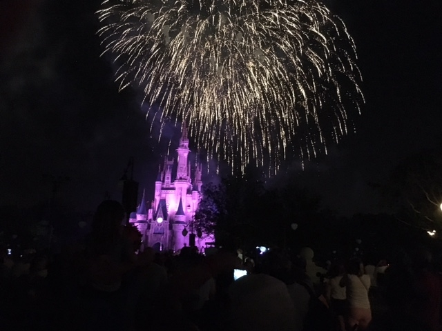 View of Wishes from the Plaza Garden East