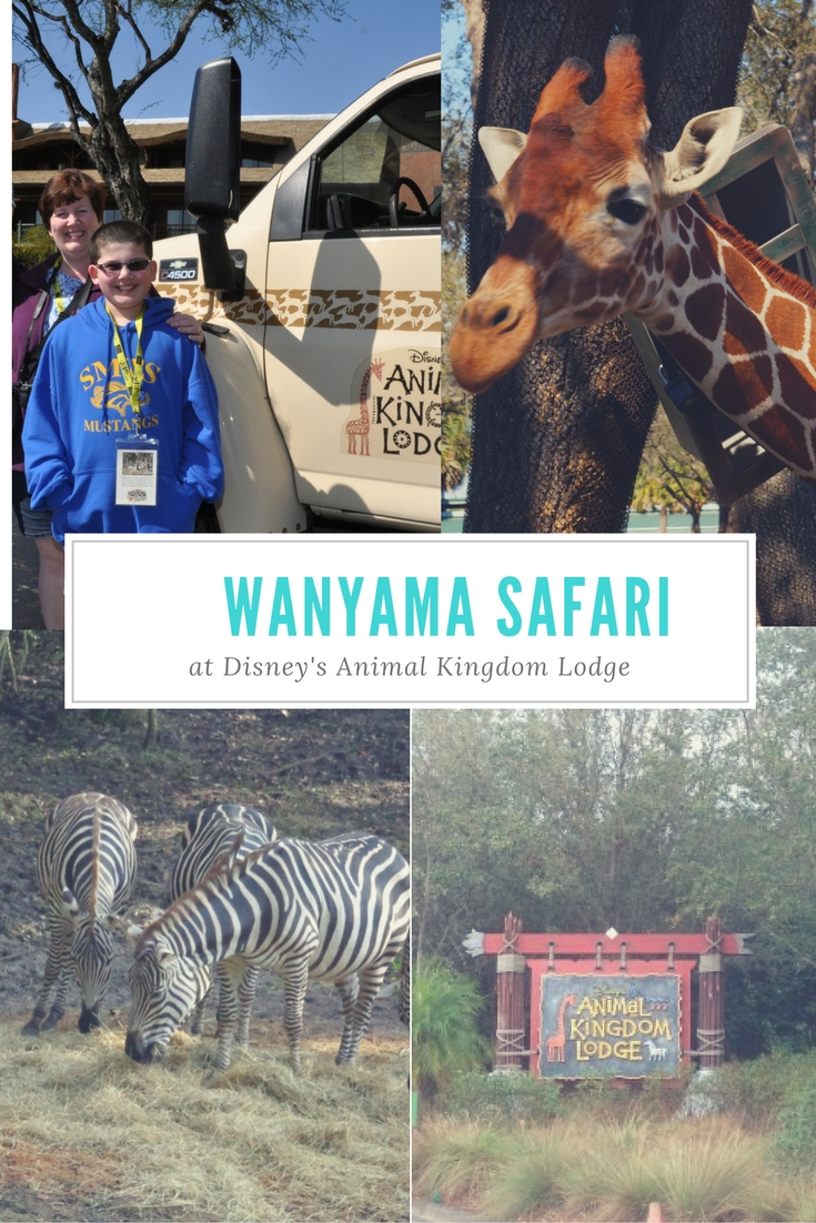 wanyama-safari