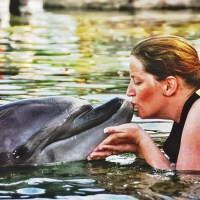 Why Families will Love Discovery Cove