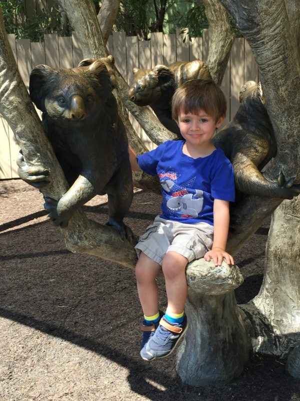 The San Diego Zoo offers plenty of places for kids to play.