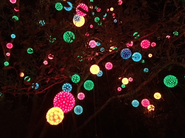 Bellingrath Gardens Magic Christmas in Lights Magical DIStractions