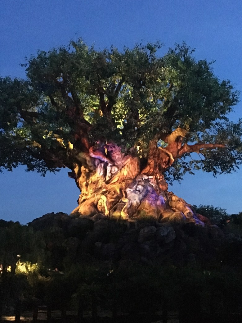 Animal Kingdom, Tree of Life, Tree of Life Nighttime Awakenings