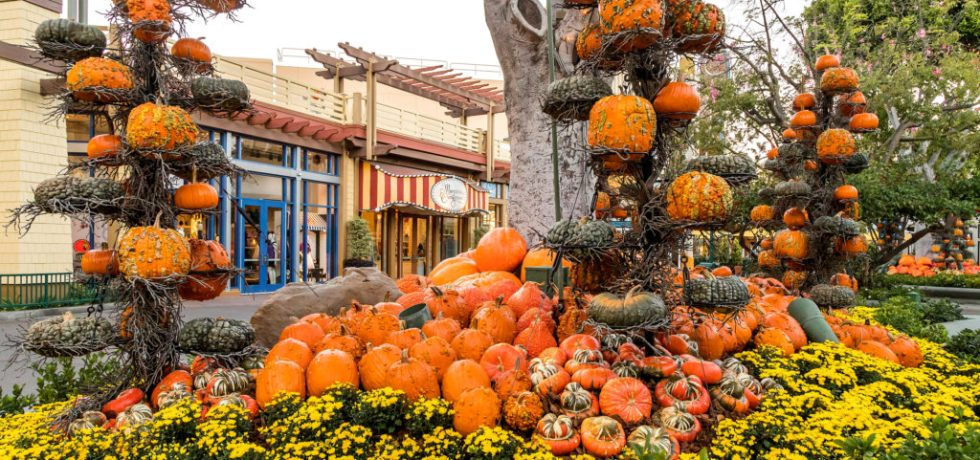 Photo of Downtown Disney in Disneyland during Halloween