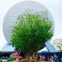Photo of Spaceship Earth in February 2020