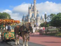 Walt Disney World Resort Magical Mousecapades'