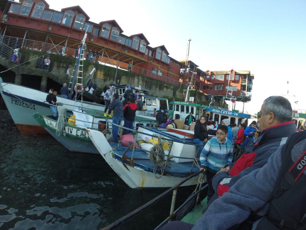Tours desde Puerto Montt