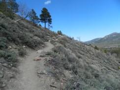 Rocky Mountain National Park_Bierstadt Lake trail_6
