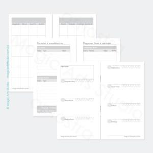 Insert permanente com visão mensal em duas paginas, controle financeiro, visão semanal em duas páginas com controle de água e espaço para anotações importantes em tamanho personal com bolinhas.