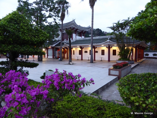 Gulangyu Island garden and palm trees